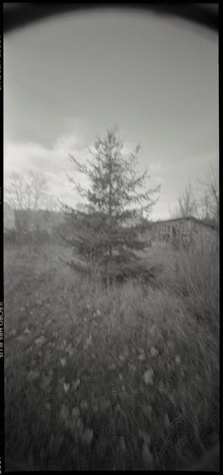Bédarieux, Hérault, France, December 2010