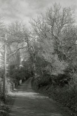 Moulinas, Hérault, France, February 2018