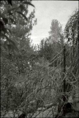 Bédarieux, Hérault, France, November 2012 (full frame)